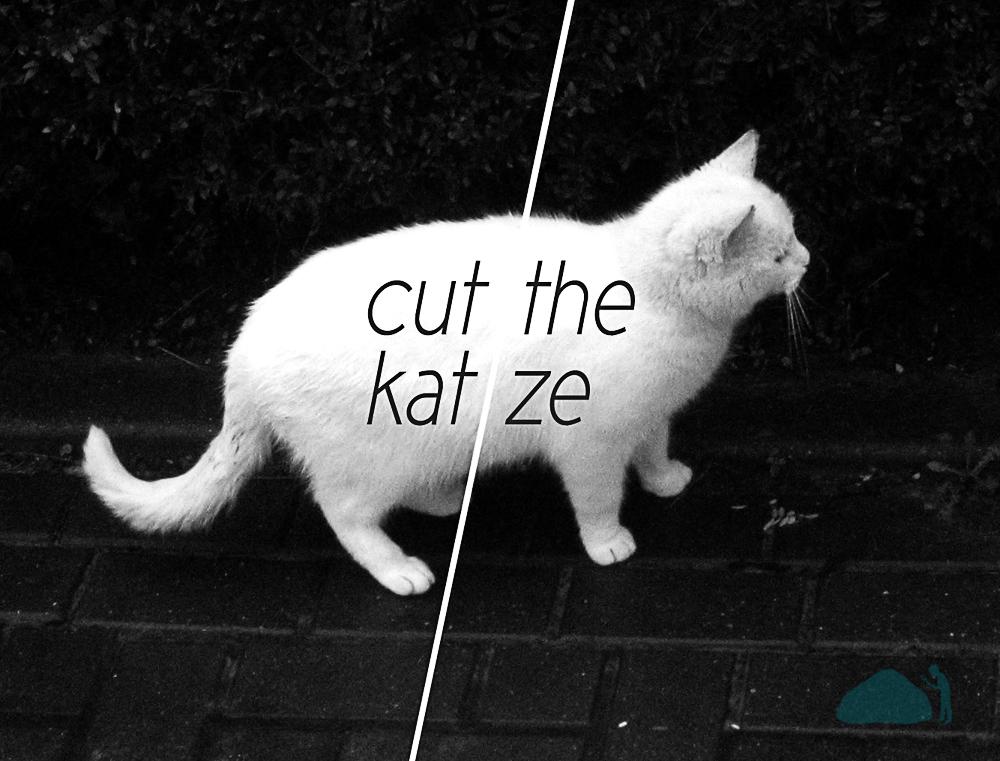 CuttheKatze
